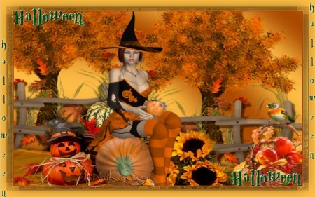 Fall Desktop Wallpaper With Pumpkins Halloween Fairy Fantasy Amp Abstract Background Wallpapers
