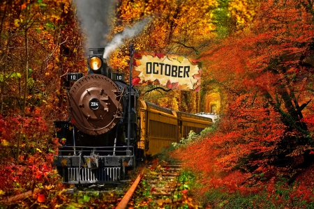 Central Park In Fall Wallpaper Happy Month Of October All Over The World 3d And Cg
