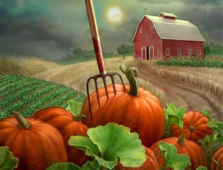 Fall Pumpkin Patch Wallpaper Pumpkin Patch Other Amp Abstract Background Wallpapers On