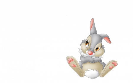Cute White Rabbit Wallpapers For Desktop Thumper Other Amp Abstract Background Wallpapers On