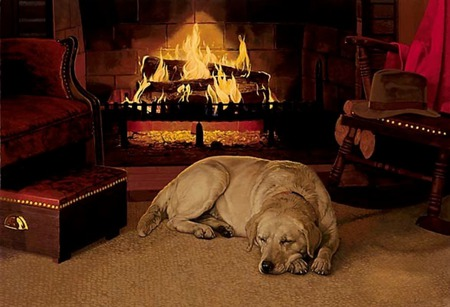Free Animated Fireplace Wallpaper Winter S Nap Other Amp Abstract Background Wallpapers On