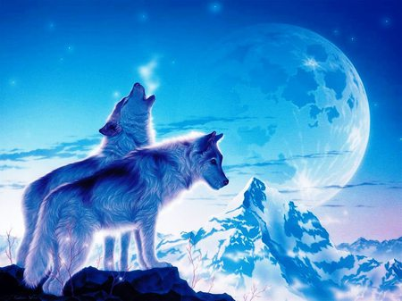 Ice Wolf 3d Wallpaper Download Blue Wolves Blue Sky Other Amp Animals Background