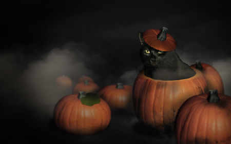 Cute Cats And Kittens Wallpaper Hd Cat Themes Happy Halloween Cats Amp Animals Background Wallpapers On