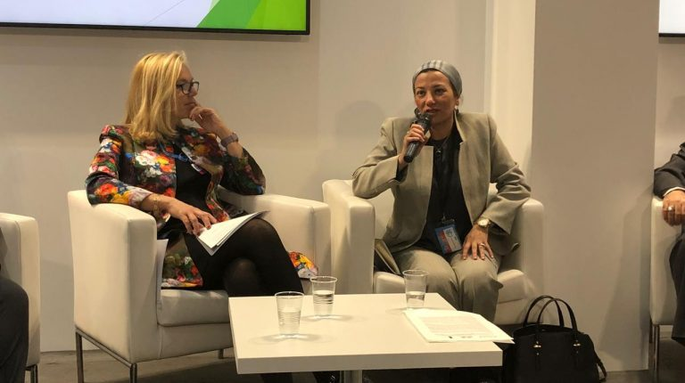 Environment Minister Showcases Egypts Experience In
