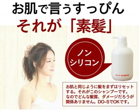 do-s-sya500-05