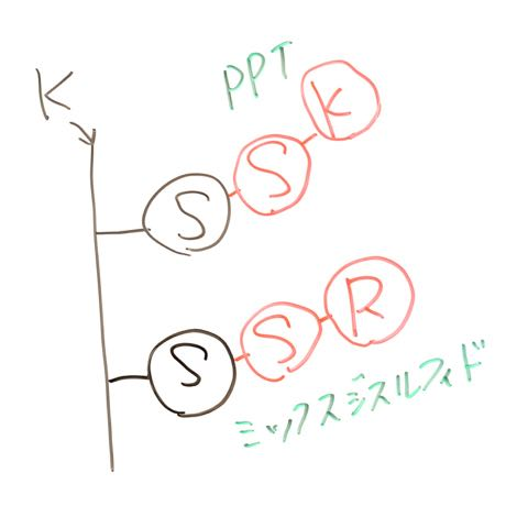 DSC_9927