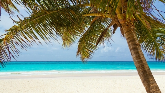 Letenka do Karibiku jen za 11550 Kč