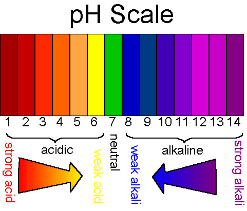 pH balance food chart Dr Akilah - Celestial Healing Wellness Center - ph chart