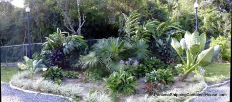 Panorama -- Back Garden --020