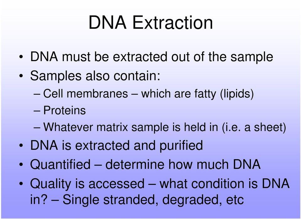Dna extraction essay Homework Academic Writing Service otessaynrgk