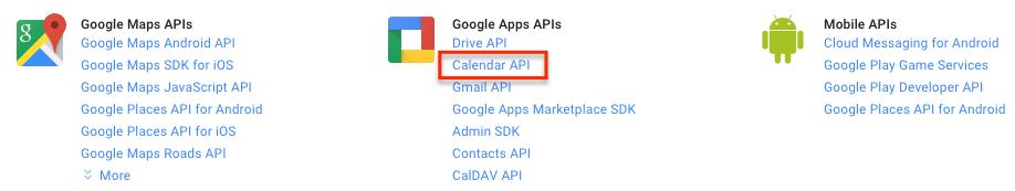 how to provide google api developer key