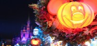 Times And Schedule For Mickey's Not-So-Scary Halloween ...