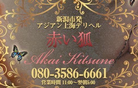 新潟アジアン上海デリヘル「赤い狐」 店舗画像