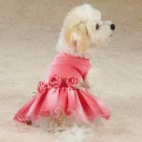 East Side Collection Spring Shimmer Dog Dress - XS ...