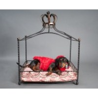 Iron Four Poster Princess Bed for Dogs