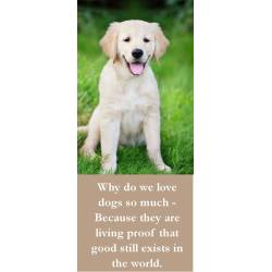Perky Why Do We Love Dogs So Much Because Y Are Living Proof That Good Still Exists World Ny Dog Quotes Clean Ny Dog Quotes Tumblr bark post Funny Dog Quotes