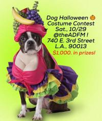Dog Halloween Costume Contest - Los Angeles - Dog Event