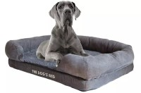 Top 5 Best Dog Beds for Great Danes in 2018 | DogStruggles