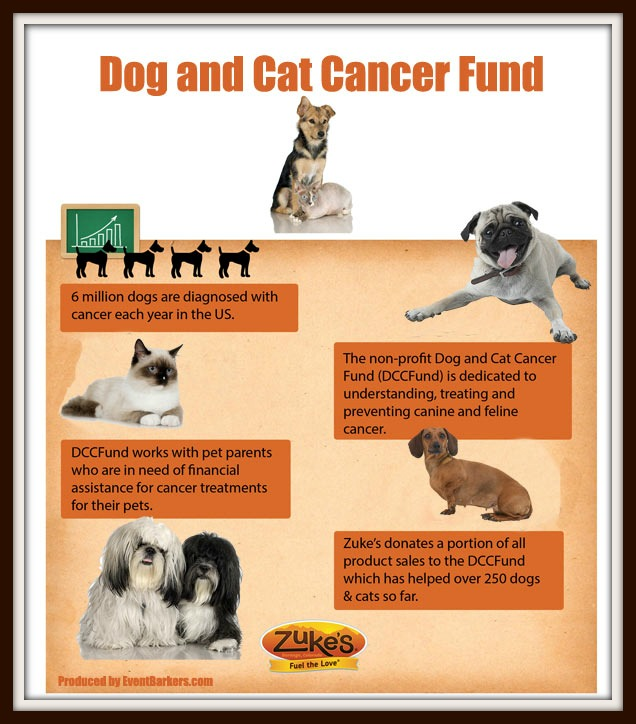 Dog_and_Cat_Cancer_FundWEB2