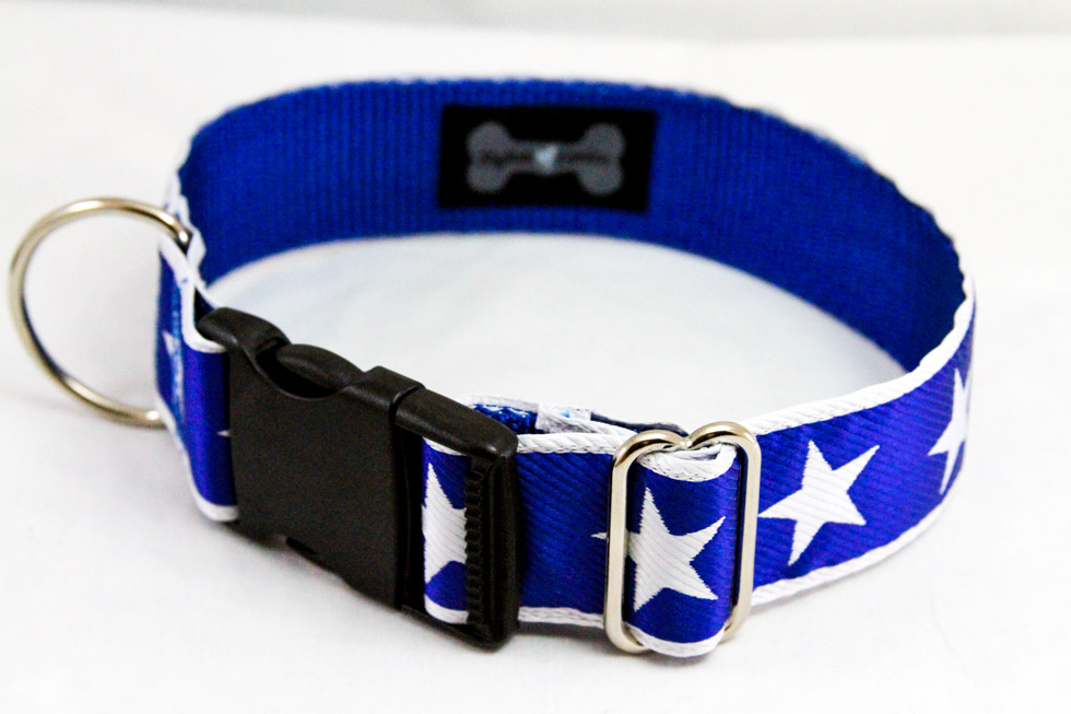StylishCanine-dog-collars-oct-22