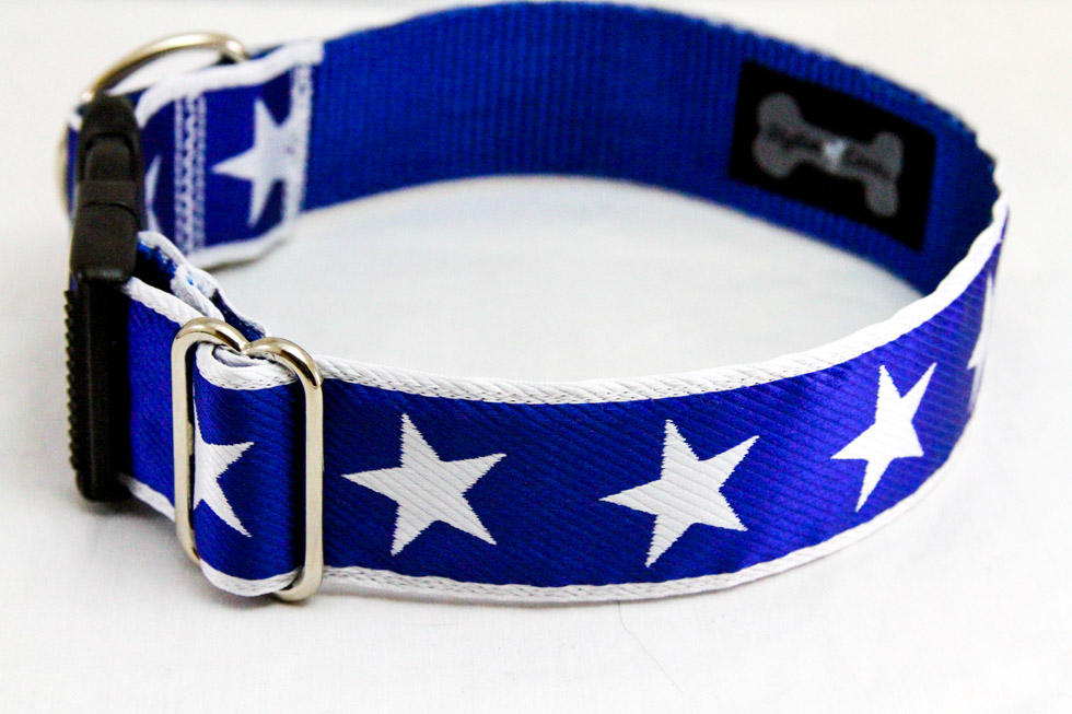 StylishCanine-dog-collars-oct-23