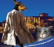 Exposing everything that happens at the BlogPaws conference in Las Vegas.