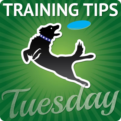 training-tips-tuesday-400