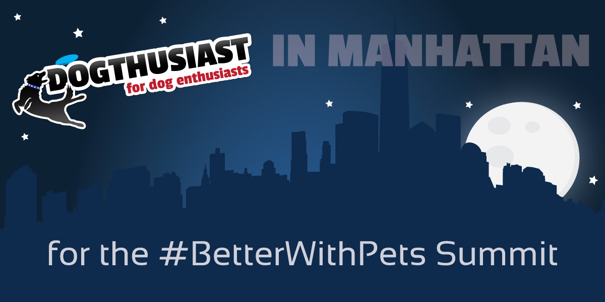DOGthusiast will be in Manhattan for the #BetterWithPets Summit – #DOGthusiastNY