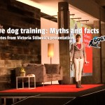 Victoria Stilwell Positive Dog Training Myths