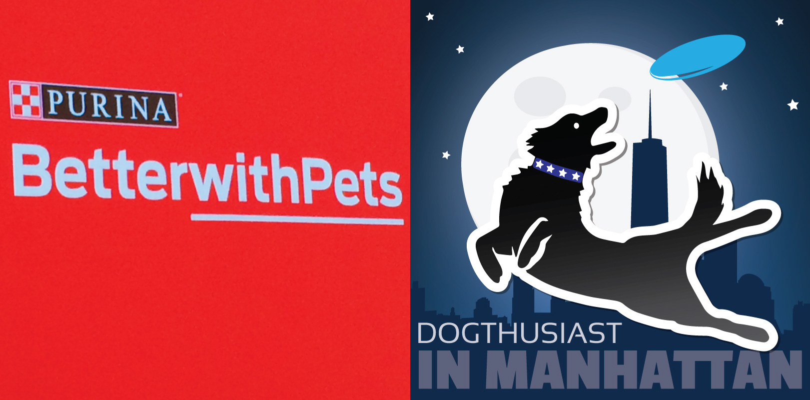 The #BetterWithPets wrap-up and exclusive content announcement from #DOGthusiastNY