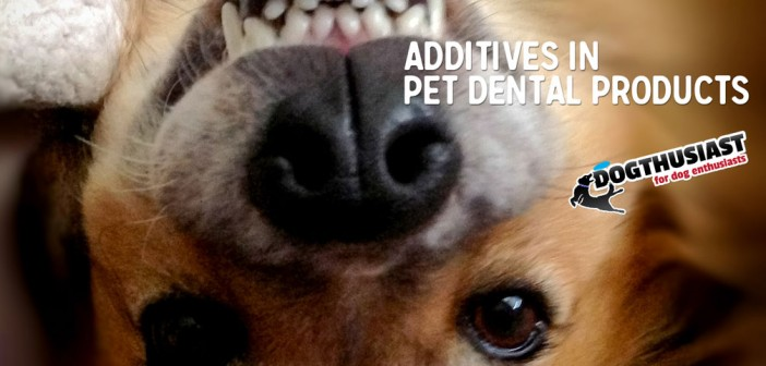 Sodium Hexametaphosphate Chemical additives in pet dental products