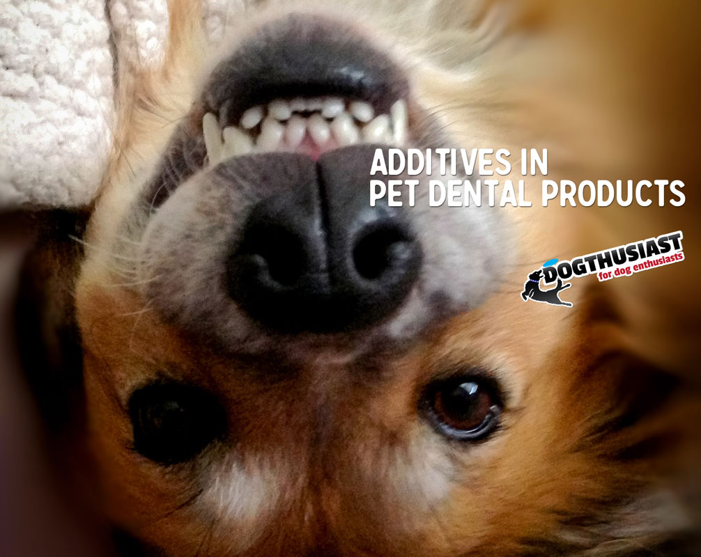 What's in your dog dental product: Sodium Hexametaphosphate