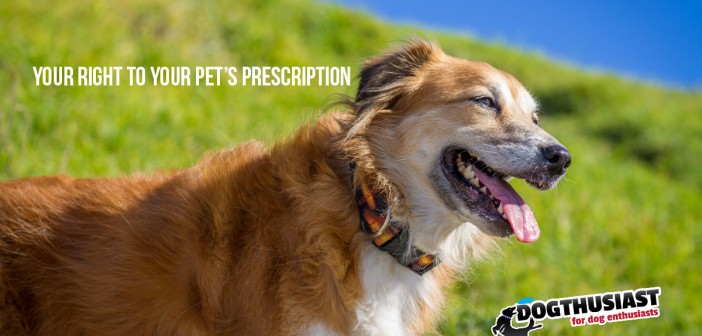 Know your rights at the veterinarian for prescriptions