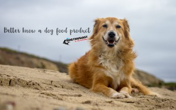Dog food ingredient list
