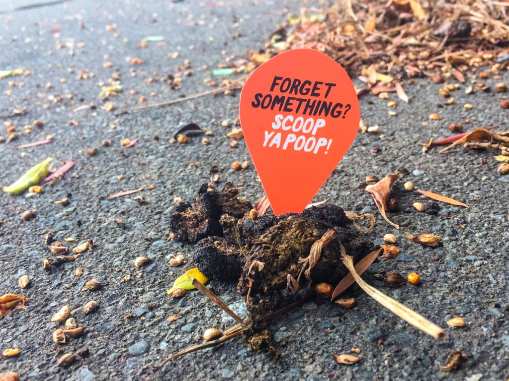 Use Poopins biodegradable markers to send a message locally