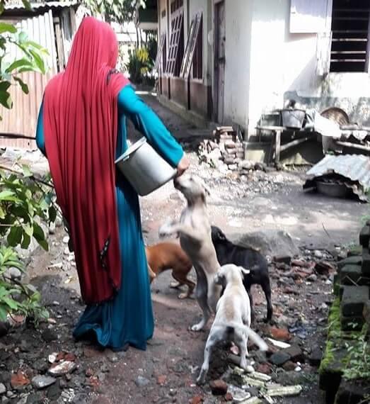 Brave Muslim woman