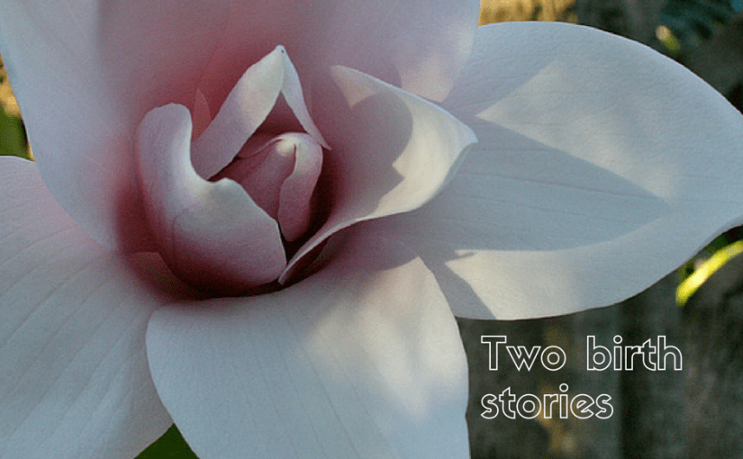 two birth stories
