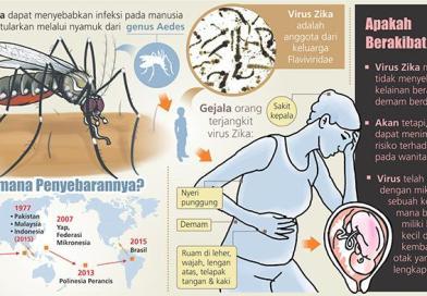 Virus Zika: Kenali, Waspadai, dan Cegah Penularannya
