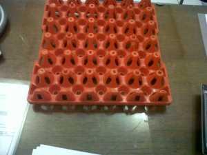egg tray plastik murah