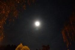 Der Mond mit einer farbigen Korona Foto: Michael Mahlke