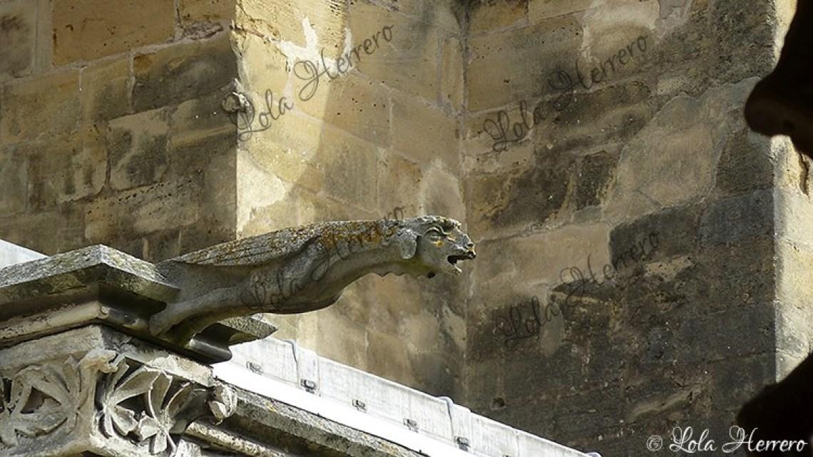 Gárgola Catedral Bayonne (Francia) (432)