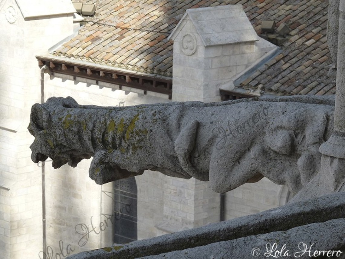 Gárgola Catedral Burgos (373)