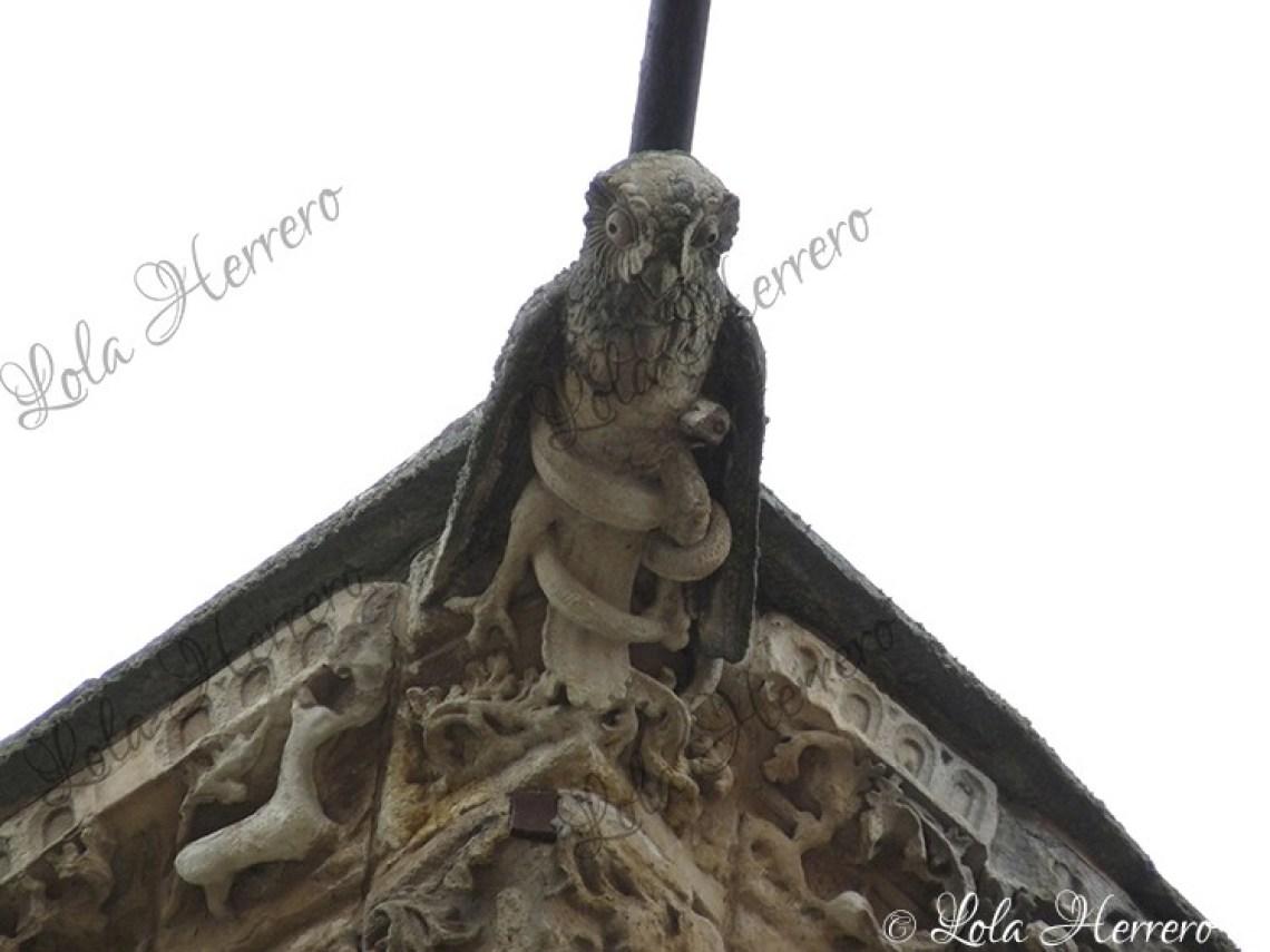 Gárgola Catedral Salamanca (372)