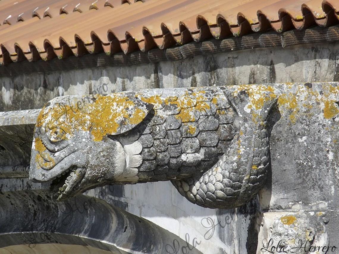 Gárgola Monasterio Alcobaça (Portugal) (431)
