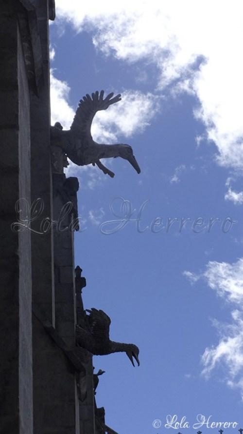 Gárgolas Quito (Ecuador) (252)