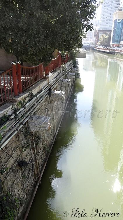 kunming-yunnan-china-copia