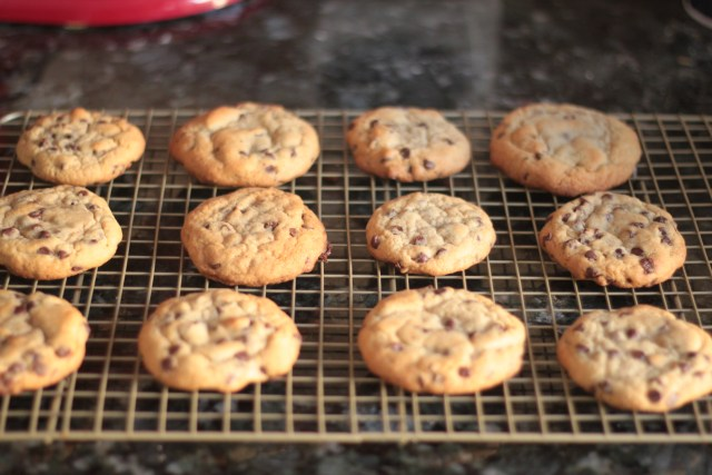 Chocolate Chip Cookies | Domestic B(i)atch