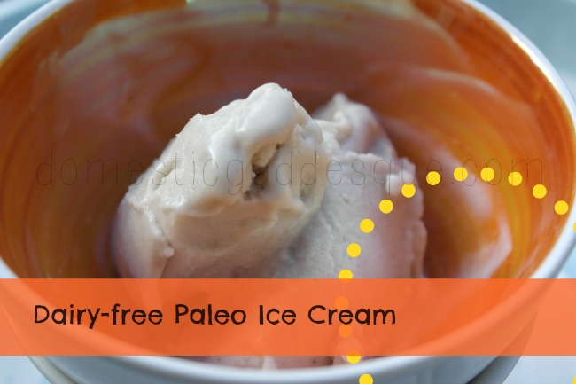 Dairy Free Paleo Ice Cream