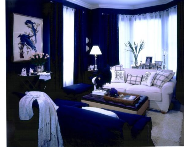 blue-living-room (1)