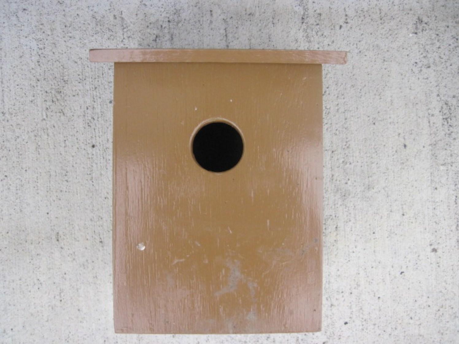 bird box (6)